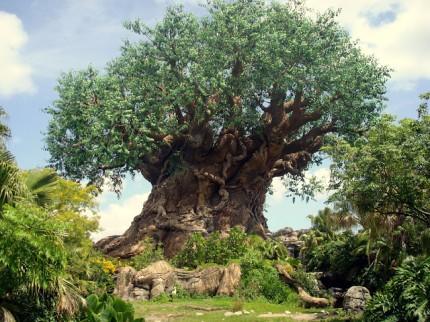 Centrum parku - strom zivota
